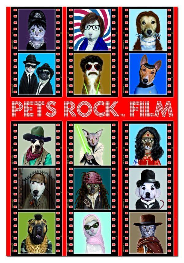 500 PETS ROCK FILM