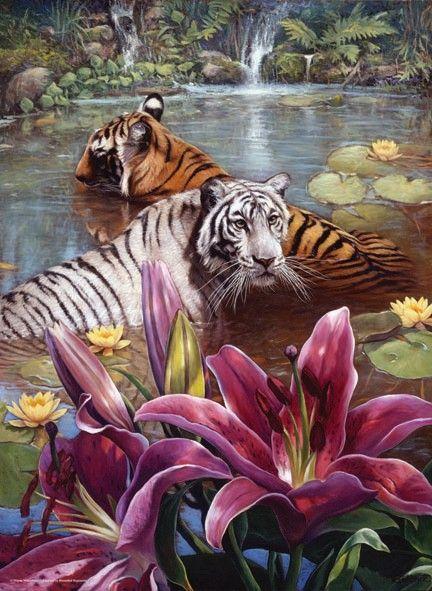 1000 DOS TIGRES (WAYNE WEBERBAUER)