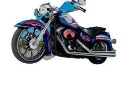 1000 TODD: MOTOCICLETA DE LA LIBERTAD (PUZZLE FORMA)