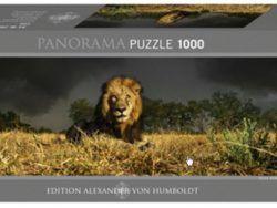 1000 PANORAMICO LEÓN