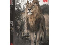 500 - Leon Orgulloso