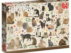 1000 - Poster de gatos