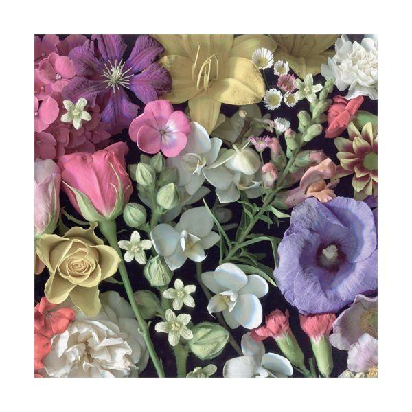1002 Cloudberries - Flowers