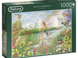 1000 FALCON - Norfolk Broads