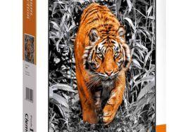 1000 Tiger
