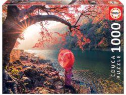 amanecer en el rio katsura, japon