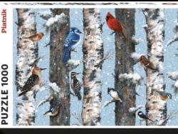 Pájaros de invierno