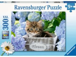 puzzle gatito 300 piezas ravensburger