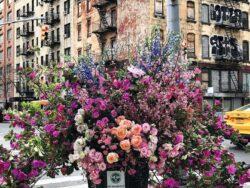puzzle flores en nueva york 300 piezas adulto ravensburger